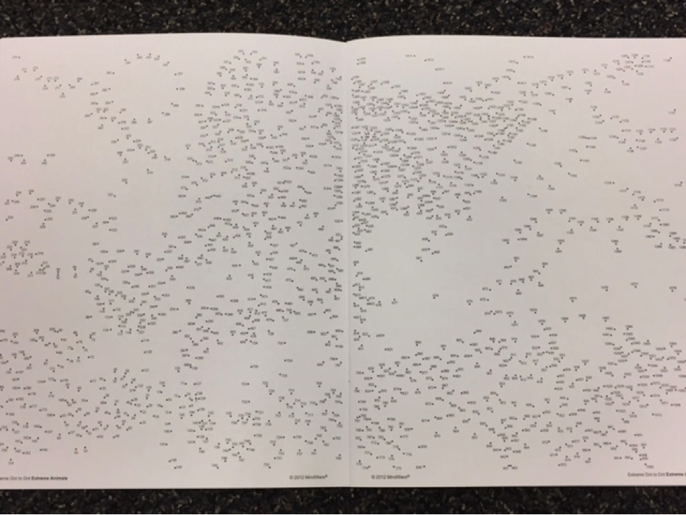 Extreme Dot to Dot book opened to incomplete picture