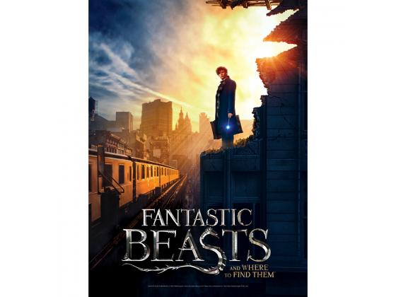 Fantastic Beasts Poster #2 500Pc