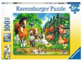 Animal Get Together 100Pc