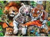 Big Cat Nap 200Pc