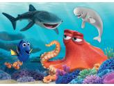 Finding Dory 100Pc