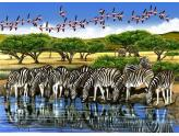 Zebras And Flamingoes 500 Pc
