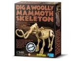 Dig A Woolly Mammoth
