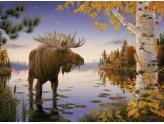 Majestic Moose 1000Pc