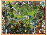 Bird's Eye View 1000Pc