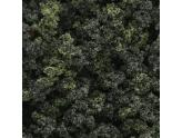 Underbrush Clump Foliage Forest Blend